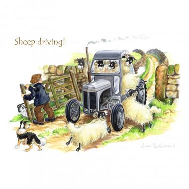 Set de Table Sheep Driving