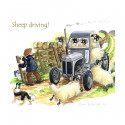 Sheep Driving Coaster